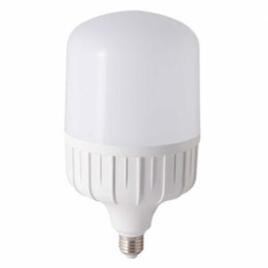 Đèn Led bulb trụ 40W TR120N1 Rạng Đông