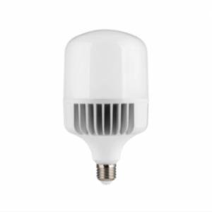 Đèn Led công suất 30W PBCC3065L E27 Paragon