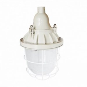 Đèn chống cháy nổ BCD200 EEW Paragon