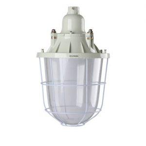Đèn chống cháy nổ LSC 250 Duhal